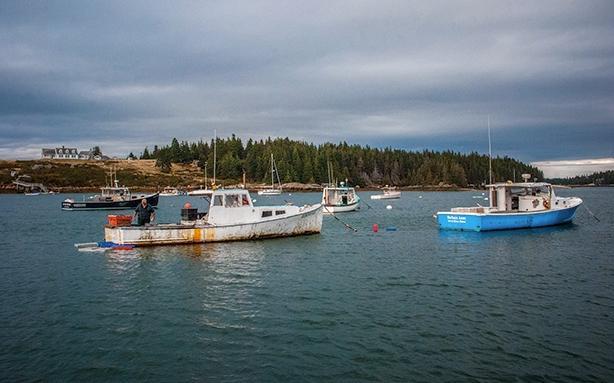Mainebiz_lobster boats