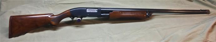M31(3)